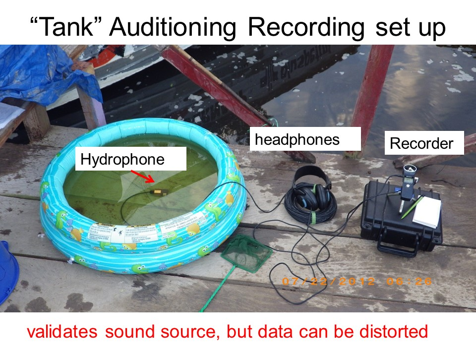Dock auditioning station